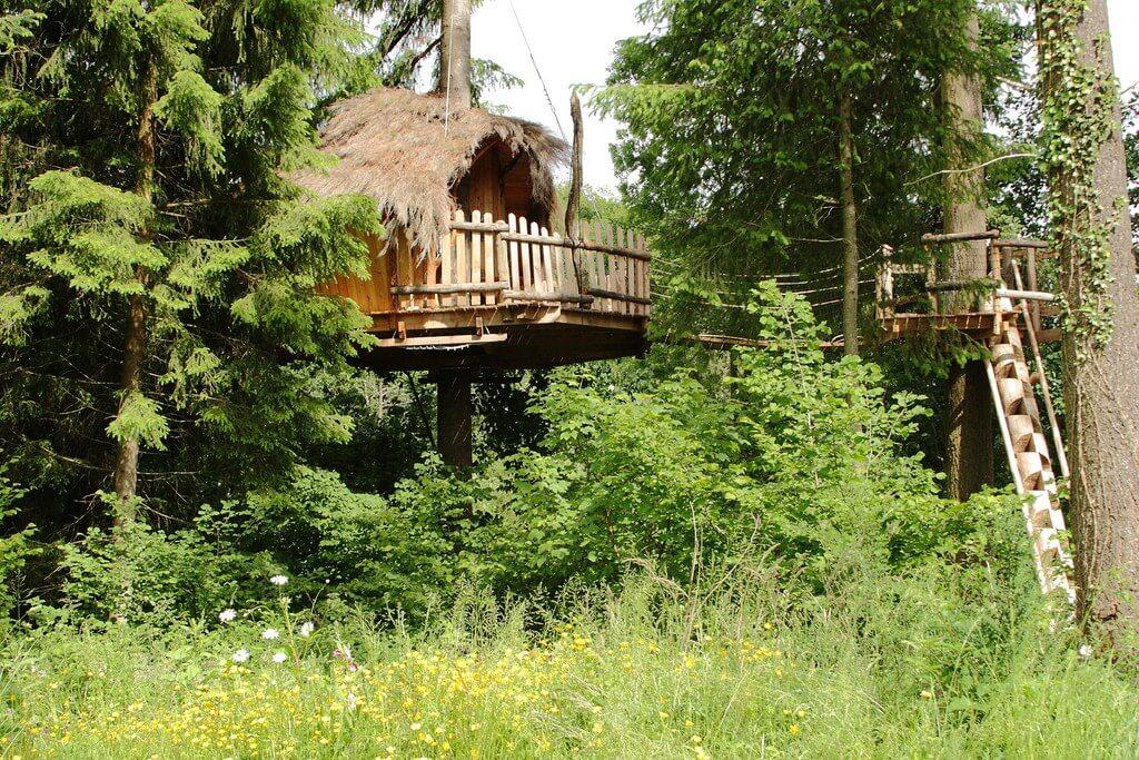 Nos cabanes perchées dans les arbres